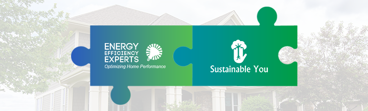 Energy Efficiency Experts and Sustainable You logo